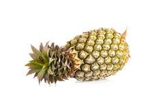 pojedynczy ananasowy white zdjęcie royalty free