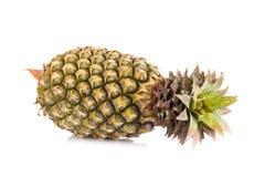 pojedynczy ananasowy white fotografia stock