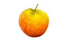 Pojedynczy Apple Zdjęcie Stock