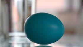 Pojedynczy błękitny Easter jajko z rozmytym tłem Zdjęcia Royalty Free