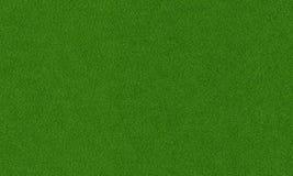 pojedynczy białe tło trawy Zdjęcia Royalty Free