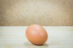 Pojedynczy brown kurczaka jajko Obraz Royalty Free
