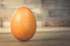 Pojedynczy brown kurczaka jajko Zdjęcie Stock