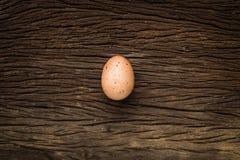 Pojedynczy brown kurczaka jajko na drewnie Zdjęcia Royalty Free