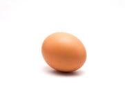Pojedynczy brown kurczaka jajko odizolowywający na bielu Obraz Stock