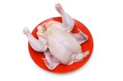 pojedynczy całego kurczaka Obrazy Stock