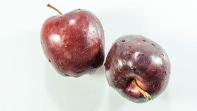 Pojedynczy czerwony jabłko na białym tle zdjęcie stock