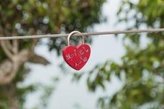 Pojedynczy czerwony miłość kędziorek na poręczu fotografia royalty free