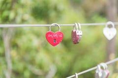 Pojedynczy czerwony miłość kędziorek na poręczu obraz stock