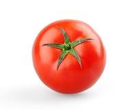 Pojedynczy dojrzały pomidor obrazy royalty free