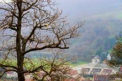 Pojedynczy drzewny sylwetki jesieni dzień Obraz Royalty Free