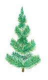 pojedynczy drzewo bożego narodzenie Fotografia Royalty Free