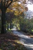 Pojedynczy Gruntowy Drogowy jesień krajobraz obraz stock