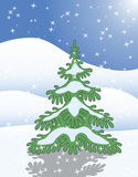 Pojedynczy jedlinowy drzewo w zima śniegu Zdjęcie Royalty Free