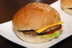 Pojedynczy kurczak wołowiny hamburger na białym talerzu obrazy stock