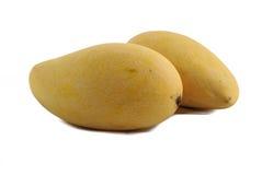 pojedynczy mango Obrazy Stock