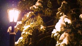Pojedynczy noc lampion iluminuje śnieg w parku zdjęcie wideo