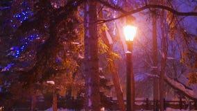 Pojedynczy noc lampion iluminuje opad śniegu w parku zbiory