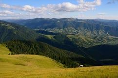 Pojedynczy odległy koń w górach Zdjęcia Royalty Free