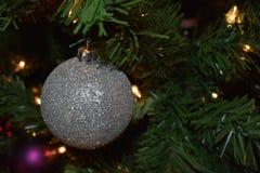 Pojedynczy ornament Fotografia Stock