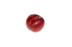 pojedynczy owoc Obrazy Stock