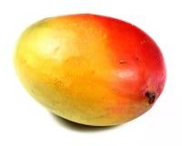 pojedynczy owoce mango Fotografia Royalty Free
