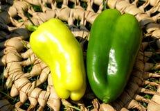 pojedynczy pepper Fotografia Stock