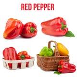 pojedynczy pepper Zdjęcia Royalty Free