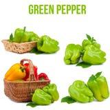 pojedynczy pepper Obrazy Royalty Free