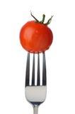 pojedynczy pomidor obrazy stock