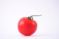 pojedynczy pomidor Zdjęcie Royalty Free