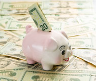 20 dolarowy rachunek w szczelinie prosiątko bank Zdjęcia Royalty Free