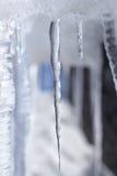 pojedynczy sopel lodu Obraz Royalty Free