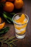 Pojedynczy szkło z świeżymi soczystymi dojrzałymi mandarynów Tangerines, lód Odbitkowa przestrzeń i zbliżenie na ciemnym tle Odgó Fotografia Stock