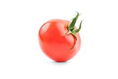 pojedynczy white pomidorowego Fotografia Stock