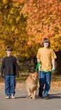 pojkar dog att gå royaltyfria bilder