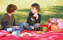 pojkar som har picknicken Arkivbild