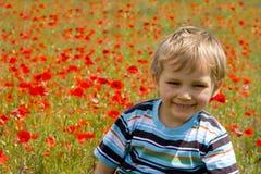 pojkeäng royaltyfri foto