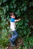 Pojke bland lövverket av lösa druvor Arkivfoton