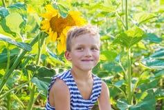 Pojke bland solrosfält Fotografering för Bildbyråer