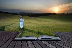 Pojke för landskap för bokbegreppsbegrepp som ung igenom går fält a royaltyfri foto