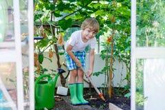 Pojke för liten unge som arbetar med den trädgårds- hackan i växthus Arkivfoto