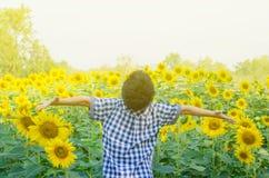 Pojke i blommafält i morgon royaltyfria bilder