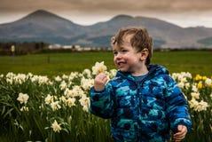 Pojke i blomsterrabatt av påskliljor Arkivfoton
