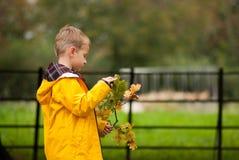 Pojke i ett jellowomslag som ser en filial i hans hand arkivfoto