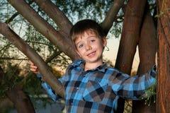 Pojke i ett träd med ett fånigt uttryck royaltyfria foton