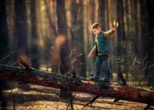 Pojke i ett tr?d arkivfoto