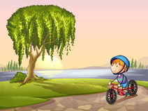Pojke i park royaltyfri illustrationer