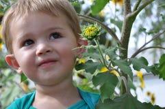 pojke little Royaltyfri Foto