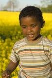 pojke little som är nätt mycket Arkivbild